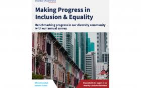 Making Progress in Inclusion & Equality