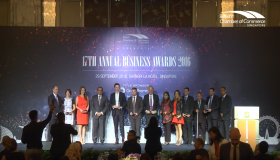 17th Annual Business Awards Highlights