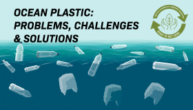 Ocean Plastic: Problems, Challenges & Solutions